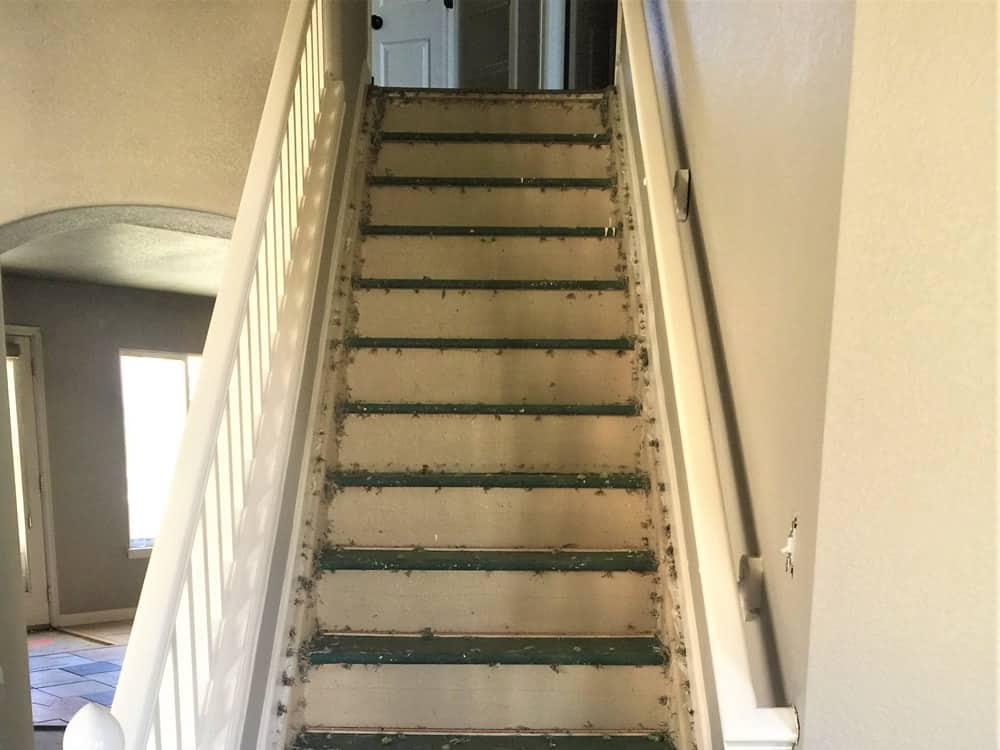 FGS residential renovation in Aurora, Colorado - in-progress staircase